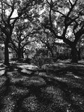 A beautiful park is a classic example of the beauty of Savannah, Georgia. Savannah, a coastal Georgia city, is separated from South Carolina by the Savannah royalty free stock photography