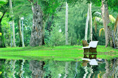Beautiful park or garden with reflection of stone bench Royalty Free Stock Photos