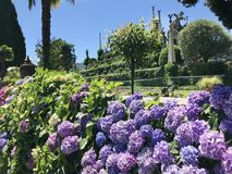 Isola Bella Gardens with Trees and Flowers. Beautiful park on the island of Isola Bella in Lago Maggiore, Italy,Lombardy ,Northern Italy royalty free stock photo