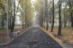 beautiful park in late autumn stock images