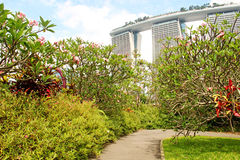 Beautiful park at the Marina Bay Sands Royalty Free Stock Photo