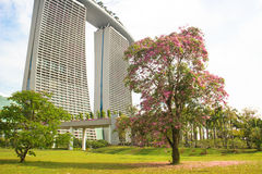 Beautiful park at the Marina Bay Sands Stock Photography