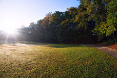 Beautiful park morning view Royalty Free Stock Photo