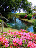 Beautiful park with natural fountain and pink flowers. Entrance of Casela, Mauritius Royalty Free Stock Photo
