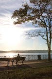 Beautiful park. Near Verrazano-Narrows Bridge royalty free stock photo