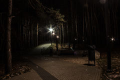 Beautiful park at night with a lantern and bridge. Background. Stock Images