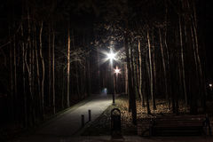 Beautiful park at night with a lantern and bridge. Background. royalty free stock photos