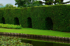 Beautiful park. With a pond Royalty Free Stock Image
