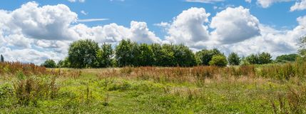 Beautiful park scene in public park with green grass field, green tree plant and a party cloudy blue sky.  Stock Photography