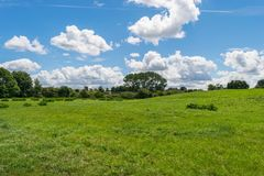 Beautiful park scene in public park with green grass field, green tree plant and a party cloudy blue sky.  Stock Photo