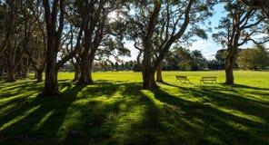 Beautiful park in Sydney Australia. Royalty Free Stock Photo