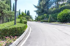 Road through a beautiful park in a hot midday stock images