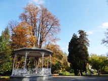 Beautiful park Royalty Free Stock Photos