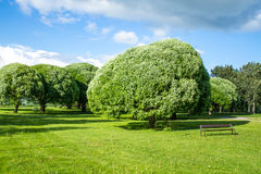 Beautiful park view Royalty Free Stock Images