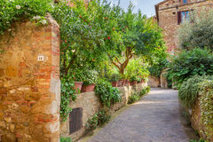 Beautiful park in the vintage town in Tuscany, Pienza Royalty Free Stock Images