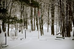 The beautiful park in the woods is sleeping with snow Royalty Free Stock Photography
