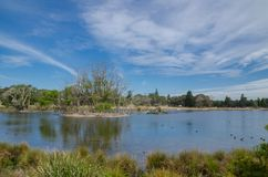 Beautiful parklands with lake and clouds with blue sky in the background, Sydney, Australia. A Beautiful parklands with lake and clouds with blue sky in the stock images
