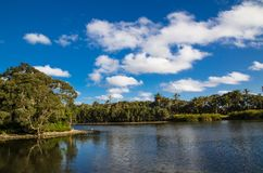 Beautiful parklands with lake and clouds with blue sky in the background, Sydney, Australia. A Beautiful parklands with lake and clouds with blue sky in the royalty free stock image
