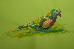 Beautiful parrot on colored cardboard Stock Image