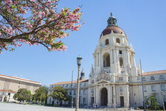 The beautiful Pasadena City Hall, Los Angeles, California. The beautiful afternoon scene with cherry blossom of Pasadena City Hall, Los Angeles, California Stock Photo