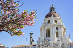 The beautiful Pasadena City Hall, Los Angeles, California. The beautiful afternoon scene with cherry blossom of Pasadena City Hall, Los Angeles, California Royalty Free Stock Image