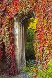 Beautiful Passageway in Cambridge Royalty Free Stock Photo