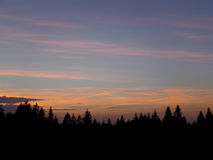 Beautiful Pastel Blue, Pink and Yellow Sunset Sky over the Silhouette of Pine Forest, Bavaria Royalty Free Stock Photos