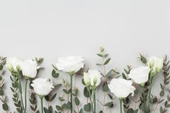 Beautiful pastel flowers and eucalyptus leaves on gray table top view. Floral border. Flat lay style. Beautiful pastel flowers and eucalyptus leaves on gray royalty free stock photography