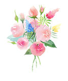Beautiful pastel gentle delicate tender cute elegant lovely floral colorful spring summer pink roses with buds, wildflowers and gr. Een leaves bouquet hand vector illustration