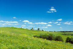 Beautiful pastoral  landscape Stock Image