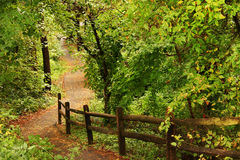 Beautiful path Royalty Free Stock Photos