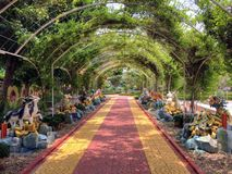 A beautiful path covered by an arch covered in plants and flowers and lined royalty free stock photography
