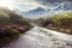 Beautiful Path. In front of the mountain Royalty Free Stock Images