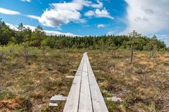 A beautiful path through a great bog in Storfors sweden. September 2018 stock photography