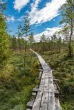A beautiful path through a great bog in Storfors sweden. September 2018 royalty free stock image