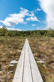 A beautiful path through a great bog in Storfors sweden. September 2018 royalty free stock photos