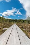 A beautiful path through a great bog in Storfors sweden. September 2018 stock image