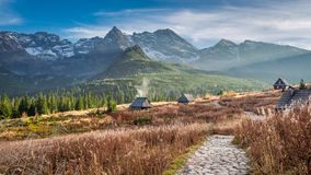 Beautiful path to the mountain valley in Tatras in autumn Stock Photography