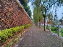 A beautiful path  Royalty Free Stock Images