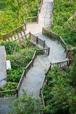 Beautiful pathway in garden of hotel Royalty Free Stock Photo