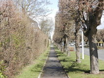 Beautiful pathway. This picture shows a pathway Royalty Free Stock Image