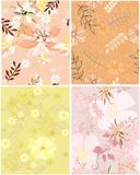 Beautiful pattern floral Royalty Free Stock Image