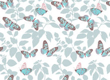 Beautiful pattern with flying butterflies. Stock Photography