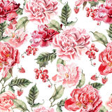 Beautiful pattern with peonies and berries. Stock Image