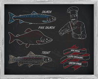 Beautiful pattern of salmon, trout and pink salmon. Chef with kn. Ives with a drawing of white on a black background Royalty Free Stock Photo