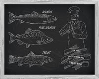 Beautiful pattern of salmon, trout and pink salmon.. Chef with knives with a drawing of white on a black background Stock Photography