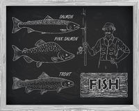 Beautiful pattern of salmon, trout and pink salmon.. Fisherman with a spinning coil with a drawing of white on a black background Stock Image