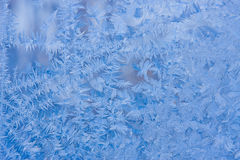 Beautiful patterns on frosty glass Royalty Free Stock Image