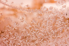 Beautiful patterns on frosty glass Royalty Free Stock Photo