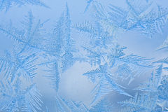 Beautiful patterns on a frozen glass. Of a window stock photos